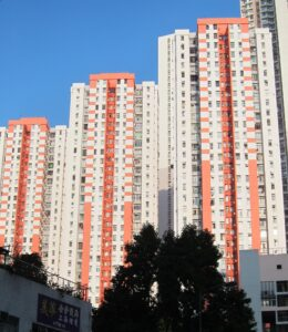 Sunny image of the façade of several tower blocks; a tree is visible in the foreground.