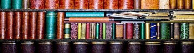 PPLS Librarian