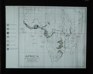 Glass slide, which probably once belonged to James Cossar Ewart, showing the distribution of the tsetse fly across Africa (GB 237 Coll-1434/2058)
