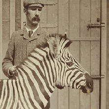 James Cossar Ewart with one of his zebras in Penicuik, outside Edinburgh, c.1900 (GB 237 Coll-14/4/6)