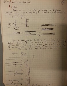 Lecture notes by Geoffrey Beale illustrating crossing over in Neurospora, 1940s(Coll-1255)